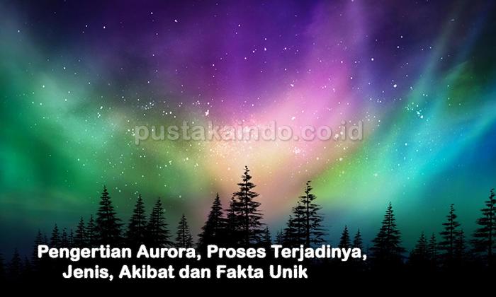 Pengertian Aurora, Proses, Jenis, Akibat dan Fakta Uniknya